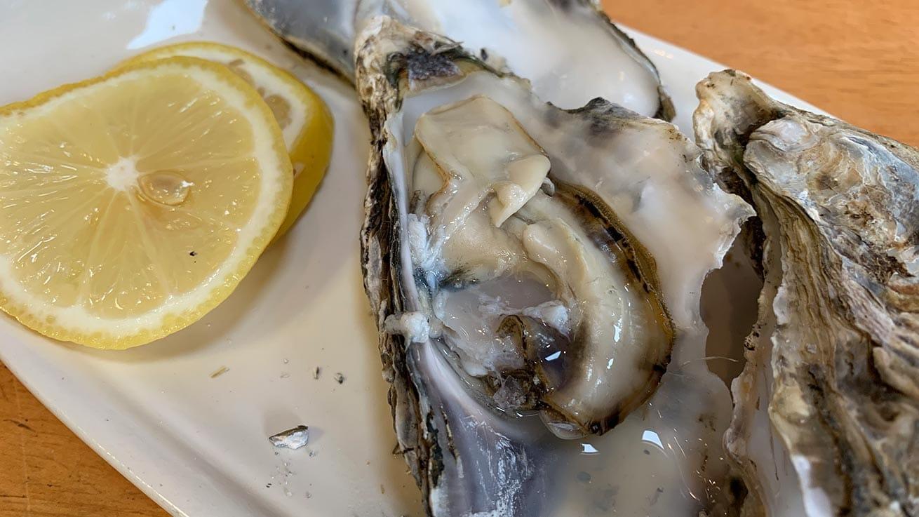 cokoguri - Matsushima Oysters