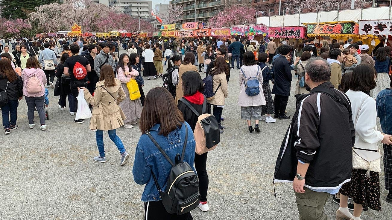cokoguri - Sakura and Hanami Lines